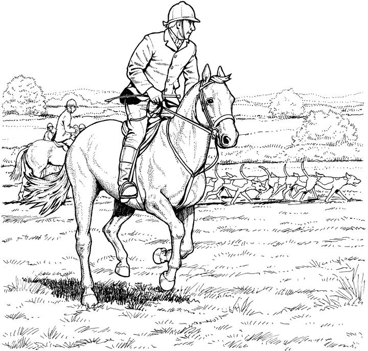 16 Best Equestrian Coloring Books images | Coloring books ... | 688x720